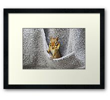 L'il Pickpocket #2 Framed Print