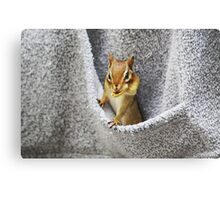 L'il Pickpocket #2 Canvas Print
