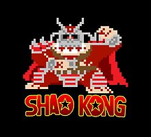 Shao Kong by psychoandy
