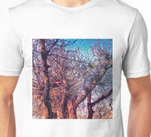Land of dreams 019 Unisex T-Shirt