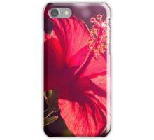 Hibiscus during sunset  iPhone Case/Skin