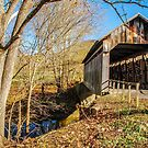 Ringos Mills Covered Bridge by Mary Carol Story