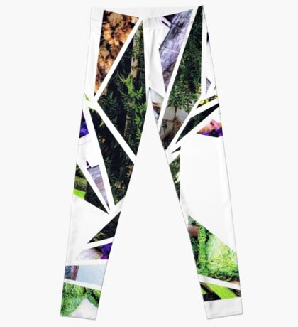 Nature in Flight (Bird Collage) Leggings