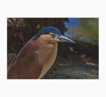 Nankeen or Rufous Night heron Baby Tee