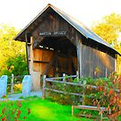 Martin Covered Bridge by mcstory