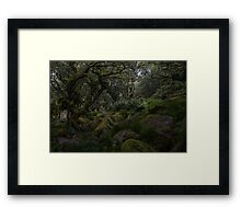 Wistmans wood Framed Print