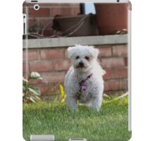 Cotton Ball on a string iPad Case/Skin