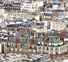 Paris rooftops by Denise Couturier