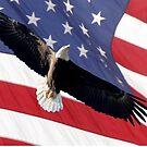 BALD EAGLE & AMERICAN FLAG by TomBaumker