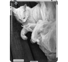 Birth of the White Cat by Darryl Kravitz iPad Case/Skin