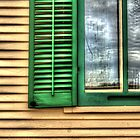 Kline Creek Farm House Window Detail by Roger Passman