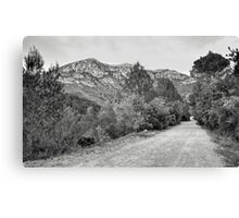Footpath in the La Murta Valley Canvas Print