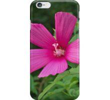 Wild Rose Mallow II iPhone Case/Skin