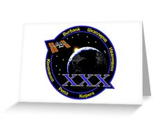 Expedition 30 Mission Patch Greeting Card