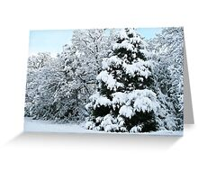 Winter Celebration Greeting Card