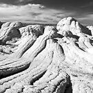 The Brain Rocks of White Pocket by Alex Cassels