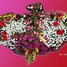 Heart of Flowers by Nira Dabush