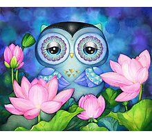 Owl in Lotus Pond Photographic Print