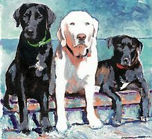 Three Labrador Retriever Dogs by RDRiccoboni