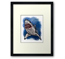 Shark Week Framed Print
