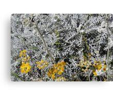 White Yellow Canvas Print