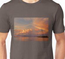 Swoosh   Unisex T-Shirt