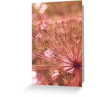 Soft red imagination  Greeting Card
