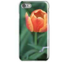 Orange Tulip iPhone Case/Skin