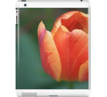 Orange Tulip II iPad Case/Skin