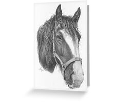 A4 Portrait Commission (Sugar) Greeting Card