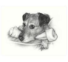 Paws off!! Art Print