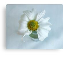A Small Pleasure Daisy Portrait Canvas Print