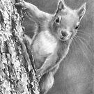 Nuts, Who Said Nuts! by Sami Thorpe
