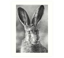 Hare Today, Gone Tomorrow Art Print