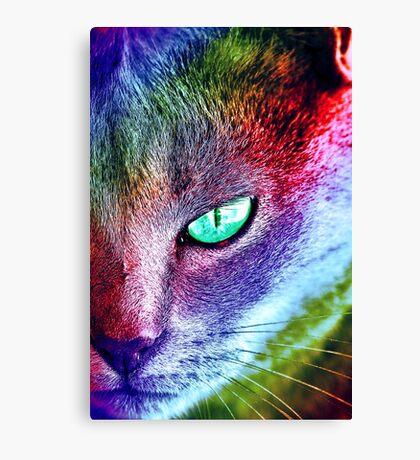 Painted Cat Canvas Print