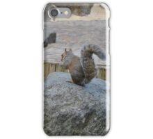 Squirrel Playground iPhone Case/Skin