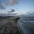 The Cobb at Lyme Regis  by Rob Hawkins