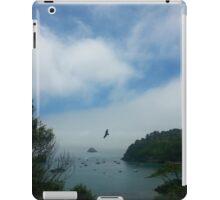 Hawk at Trinidad Head, Trinidad, CA iPad Case/Skin