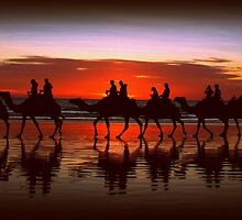 Broome Camel Train by Kat de la Perrelle