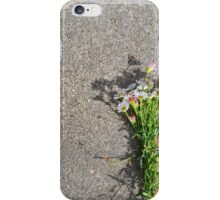 Bunch of Daisies iPhone Case/Skin