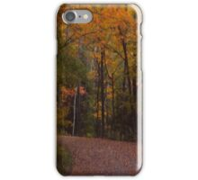 South Ontarian Fall iPhone Case/Skin