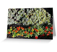 Hens and Chicks with Cosmos Greeting Card