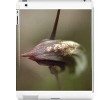 Maroonhood On the Nature Trail (Colour) iPad Case/Skin