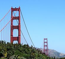 San Francisco Golden Gate by Henrik Lehnerer