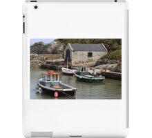 Village in Northern Ireland iPad Case/Skin