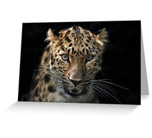 face to face with the panther Greeting Card
