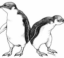 Little Blue Penguins - smallest penguin in the world! by TumbleweedTees