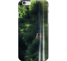 Doe in the Morning iPhone Case/Skin