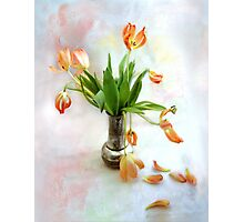 Colorful Tulips in an Antique Silver Pot Photographic Print