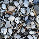 Pebbles and leaves by Maggie Hegarty